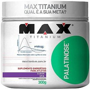 Palatinose (300g) - Max Titanium