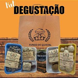 Combo 1 - Kit Degustação