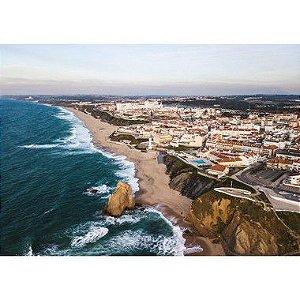 Santa Cruz Drone