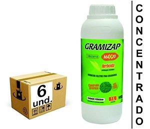 GRAMIZAP MAX20 IMAZAPIR HERBICIDA CITROMAX 6x1 L