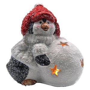 Enfeite De Ceramica Pinguim Com Bola De Led Natal