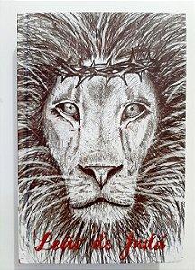 Bíblia Sagrada King James Atualizada Leão de Judá Capa Dura