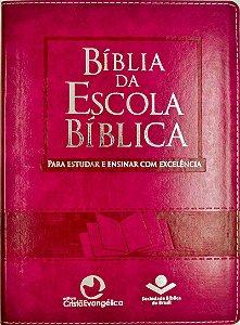 Bíblia Da Escola Bíblica - Púrpura