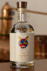 GIN SECO DRYCAT 750 ml.
