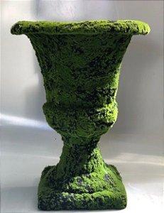 Taça musgo
