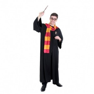 Fantasia Harry Potter Adulto