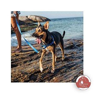 Peitoral Anti-Puxão - Para Cachorros MÉDIOS