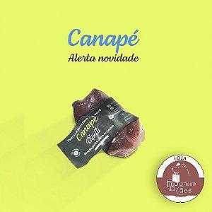 Canapé - Kit 2 Focinhos Suínos - Mordedor Natural para Cães