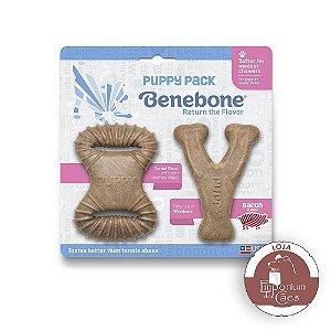 Benebone Puppy - Bacon - Kit Dois Formatos (Dental + Wishbone)