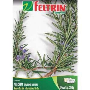 Semente Alecrim - Feltrin - 20 unidades