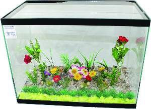Aquário Curvo Retangular - Club Pet - 27 L - (40 cm x 23 cm x 30 cm)