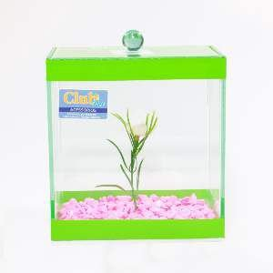 Beteira Retangular Decorada - Club Pet - (16 cm x 31 cm x 31 cm) - c/ 6 un