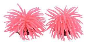 Enfeite soft coral anemona P - GPD - com 2 unidades - 10x8x8cm