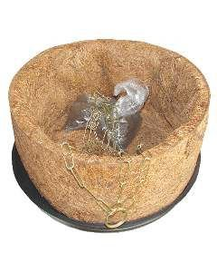Vaso fibra de coco conjunto 116 - Mato Verde