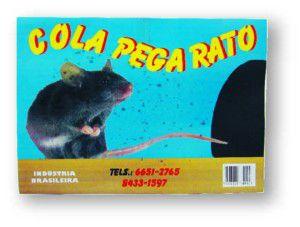 Ratoeira Adesiva Cola Pega Tudo - Z Mix
