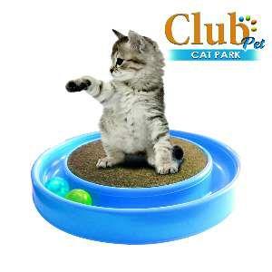 Arranhador plastico cat park azul - Club Pet Duplas - 37x37x7cm