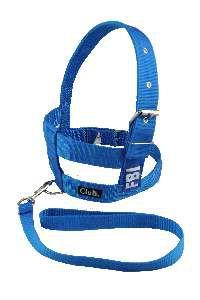 Conjunto peitoral e guia FBI com dupla regulagem - Azul - N10 - Club Pet Viva - 930x620x35mm