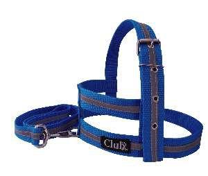 Conjunto peitoral e guia refletivo - Azul - Pequeno - Club Pet Viva - 600x170x10mm