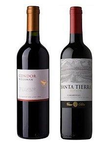 1 - KIT CHILE - SUPER PROMOÇÃO - Condor Carmenere e Casa Silva Santa Tierra Carmenere