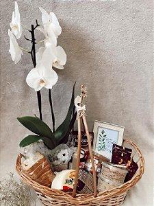 Cesta com Orquídea Pura Elegância - Entrega em BH e região M06
