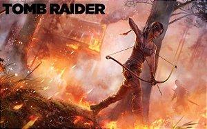 Poster Tomb Raider #C