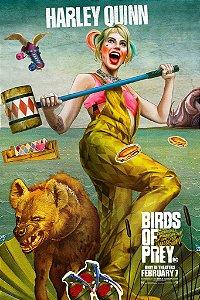 Poster Arlequina Em Aves De Rapina E