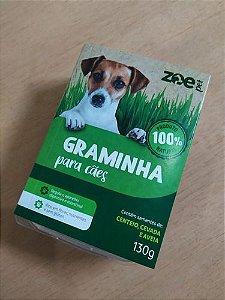 Graminha Para Cachorro Petisco Pet Grama Auxilia Digestao