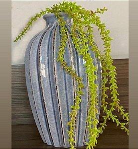 Vaso ovalado