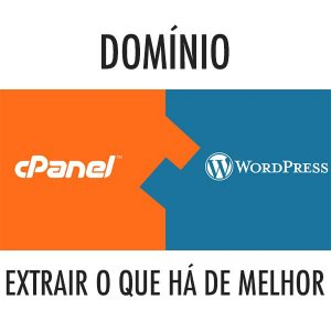 DOMINE O WORDPRESS