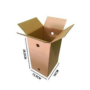25 Caixas para Picolé 16x13,5x26,5 (PIC 39)