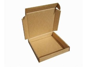 50 Caixas Papelão Carta Registrada D º11 - C 15 x L 14 x A 2,5 Cm