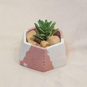 Vaso em concreto hexagonal
