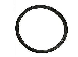 CASP0071 - Anel do filtro aspirador Ecoclean