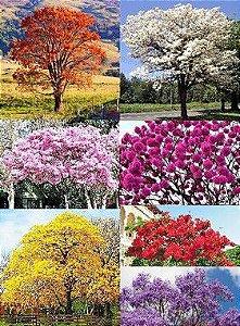 Kit c/ 7 Árvores de 7 Cores de Flores Diferentes - Laranja - Branca - Rosa - Roxo - Amarelo - Vermelho e Azul Royal