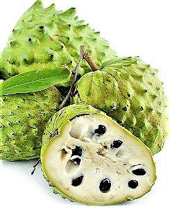 Atemoya Enxertada - Atemoia Cultivar Muito Doce e Frutas Graúdas