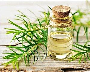 Óleo Essencial de Melaleuca - 100% Natural - 10 ml