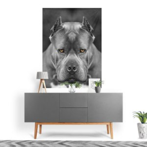 Stompy Tecido Decorativo Tactel Pitbull