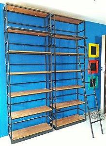 Duas Estantes e Uma Escada Para Livros