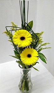 Duas lindas gérberas amarelas