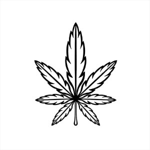 Adesivo - Cannabis Natureza