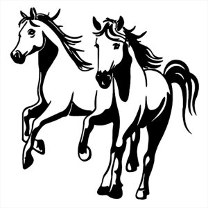 Adesivo - Cavalos Esporte