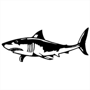 Adesivo - Tubarão Natureza