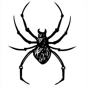 Adesivo - Aranha Natureza