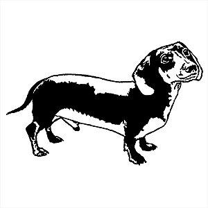 Adesivo - Cachorro Dog Salsicha Pets