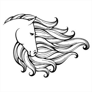 Adesivo - Cavalo Cabelos Cartoon Hair Horse Desenho