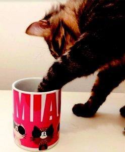 Caneca Miau