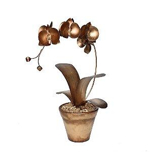 Orquídea de latão Dourada Escura em Vaso Cerâmica
