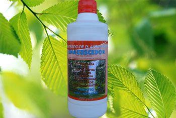 Emagrecedor concentrado de Plantas Medicinais 500ml
