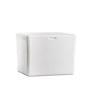Caixa de Isopor 50L