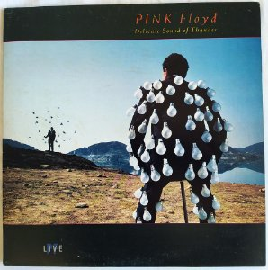 Vinil LP: Pink Floyd - Delicate Sound of Thunder